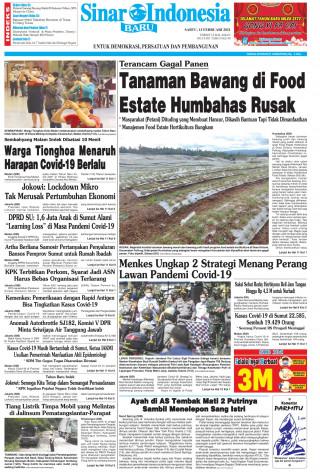 Tanaman Bawang di Food Estate Humbahas Rusak
