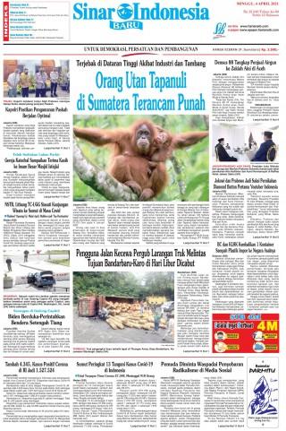 Orang Utan Tapanuli di Sumatera Terancam Punah